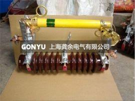 RW10-10F/100A户外高压跌落式熔断器,RW10熔断器