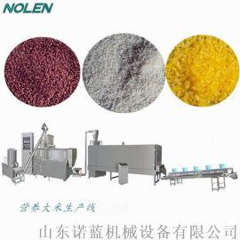 自动化黄金大米生产设备有机米生产线