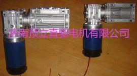 蜗轮蜗杆双级减速直流电机