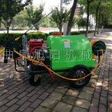 直销旭阳300L推车式农用打药机 高压喷雾器
