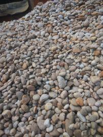 渗水石 鹅卵景观石厂家    园林驳岸的选择