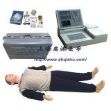 最新版心肺复苏模拟人,模型