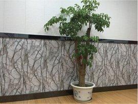 幕牆金屬雕花裝飾牆板 彩鋼夾心聚氨酯芯材隔熱保溫牆板