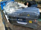 DZ600\2S金针菇真空包装机香香魔芋真空包装机