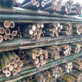 2米粗竹竿 树木支撑杆 绿化支撑杆