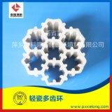 **水洗塔XA-1輕瓷梅花環輕瓷規整填料輕瓷多齒環