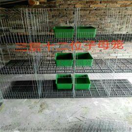 厂家直销兔子笼新疆 广西兔笼子养殖专用  镀锌兔笼