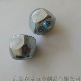 螺母  轮轱螺母  12X12.5 汽车专用