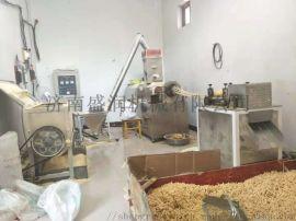 盛润机械双螺杆锅巴生产线