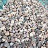 本格供应优质鹅卵石 天然鹅卵石 水处理滤料