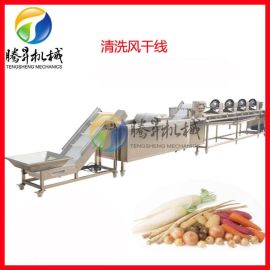 自产研发自动化 果蔬加工流水线  净菜配送中心设备