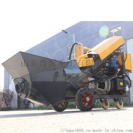 细石砂浆混凝土输送泵 微型地泵