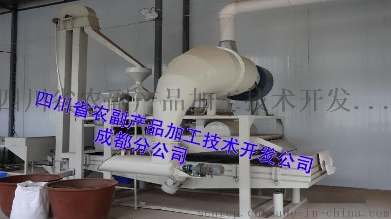 苦蕎茶生產線,苦蕎米生產線,黑苦蕎加工設備