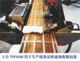 印刷油墨烘干加热器TYP3300