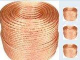 铜包钢绞线,防雷接地线