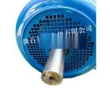 起重冶金用電機,YZR355L1-10/110KW