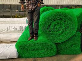 三维植被网/三维植被网厂家/三维复合排水板