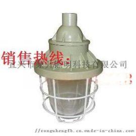 BCD防爆灯CYBP8930防爆平台灯