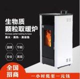 生物質顆粒爐 甘肅生物質取暖爐設備廠家
