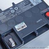 Panasonic鉛酸UPS蓄電池12V24AH