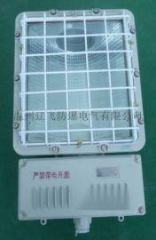 一体式BAT52-L450Z防爆泛光灯
