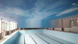 游泳池装饰材料-防水胶膜