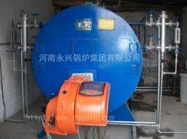 杭州天然气蒸汽锅炉