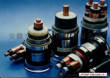 电力电缆(ZRVVP)