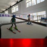 冰雪运动体验设备 山东室内滑雪模拟器