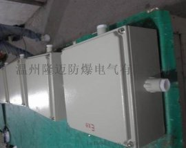 BJX-20A D2X2防爆接线箱端子箱