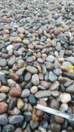 山西天然鹅卵石厂家 永顺鹅卵石多少钱一吨