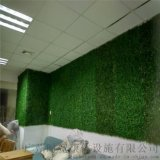 加密米蘭草,婚禮現場佈置,酒吧咖啡館店舖辦公場所戶外室內裝飾綠化