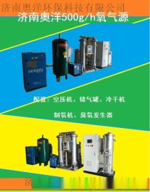 大型臭氧发生器厂家济南奥洋专业生产值得信赖