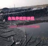 水產養殖魚塘防滲用什麼規格土工膜藕池防滲土工膜