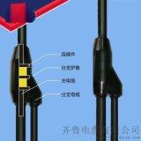 齐鲁电缆预分支电缆YFD-YJV-4*185