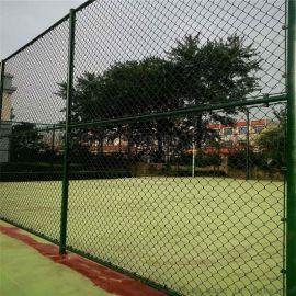 包塑勾花网体育场围网定制球场护栏
