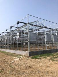 玻璃溫室,玻璃溫室建設