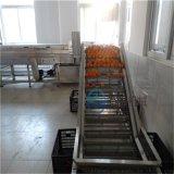 熱銷洗橙子機器 橙子清洗機 臍橙清洗機器廠家