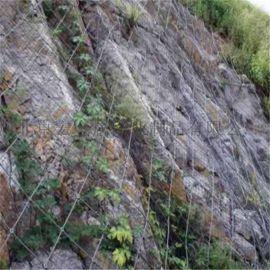 绿化边坡防护网-绿化防护网厂家-绿化防护网施工