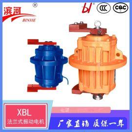 XBL系列立式振动电机