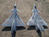 雙座殲10戰鬥機模型 大比例軍事模型定製廠家