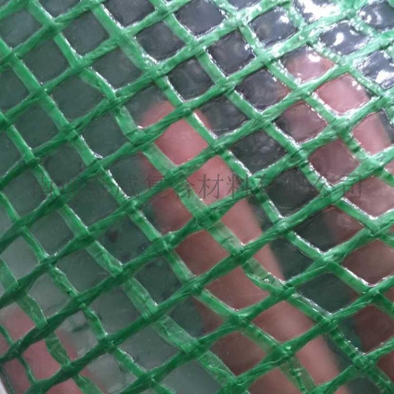 網格布 PE夾網布 花房用網格布