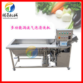 果蔬清洗机 旋流气泡沙枣双重清洗机