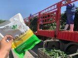 厂家直供 二氧化氯粉剂 食品加工专用