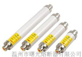 变压器保护用高压限流熔断器XRNT1-10KV/2.15-40A