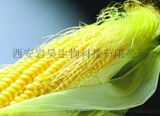 玉米须Corn silk  Extract