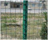 厂家批发圈地荷兰网 养殖种植防护网 浸塑荷兰网