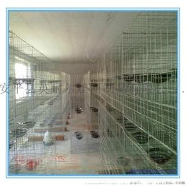 鸽笼子|三层和四层鸽笼|英耐尔各种鸽笼