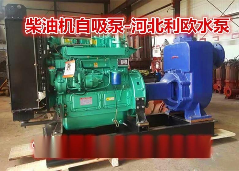 利欧ZW无堵塞自吸排污泵自吸污水泵50ZW15-30柴油机自吸泵清水离心泵农用排灌泵卧式泥浆泥沙泵
