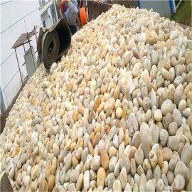 商丘承托层鹅卵石厂家 鹅卵石滤料价格